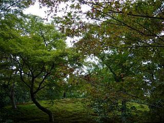 金閣寺(その12)