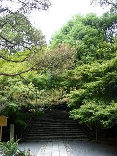 金閣寺(その17)