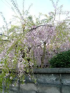 福島の風景(その1)