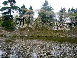 福島の風景(その4)