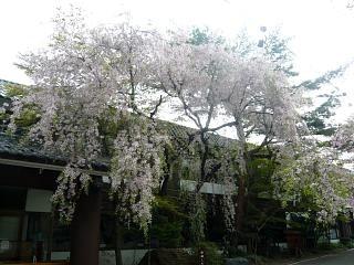 福島の風景(その8)