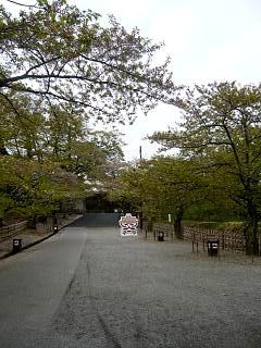 福島の風景(その10)
