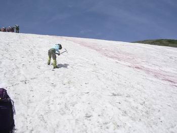 雪渓を登ります13
