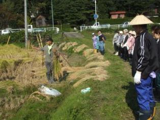 H21稲刈りHP