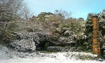 雪景色1(2009.12.19)
