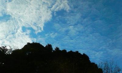 秋空(2010.09.26)