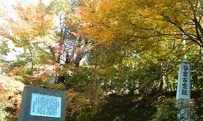 谷窯古窯跡(2010.11.23)