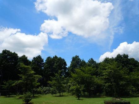 歴史と文化の森公園