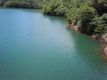 秘色の湖(2011-07-10)8
