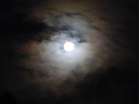 夜半の月(2011-07-12)