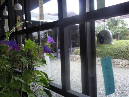 九陶の風鈴と朝顔(2011-08-10)