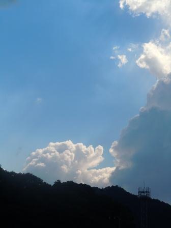 残暑3(2011-08-27)