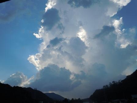 残暑1(2011-08-27)