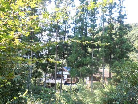 龍泉荘2(2011-08-28)