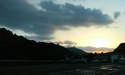 樹齢千年の大公孫樹(2010.11.20撮影)