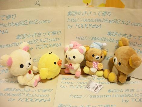 DSCN6017-s.jpg