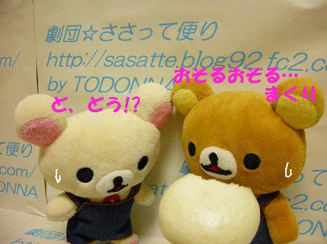 DSCN7603-s1.jpg