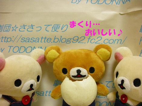 DSCN7605-s1.jpg