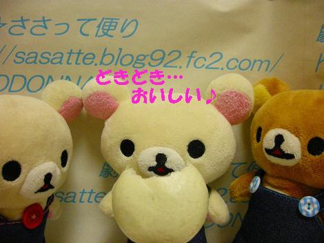 DSCN7606-s1.jpg