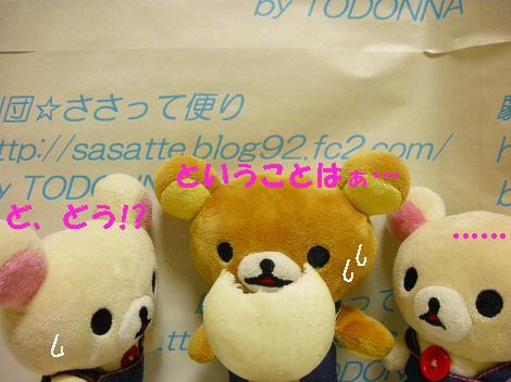 DSCN7608-s1.jpg