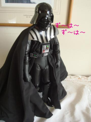 SW moji1