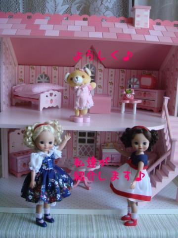 dollhouse8.jpg