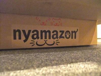 ニャマゾン2
