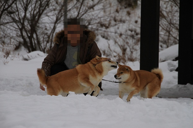 24 1月4日 福島 040