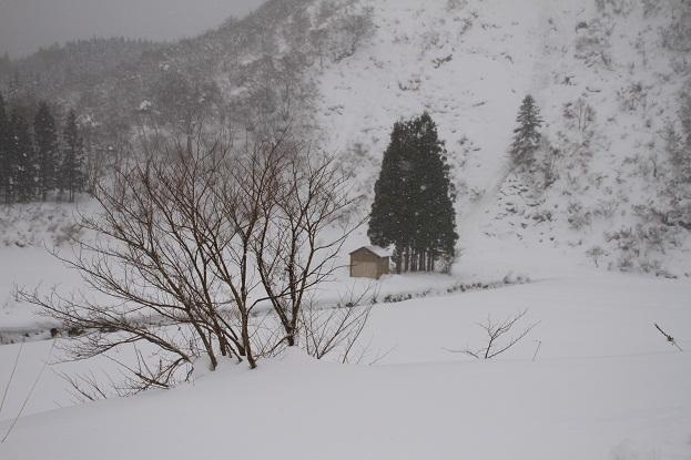 24 1月4日 福島 133