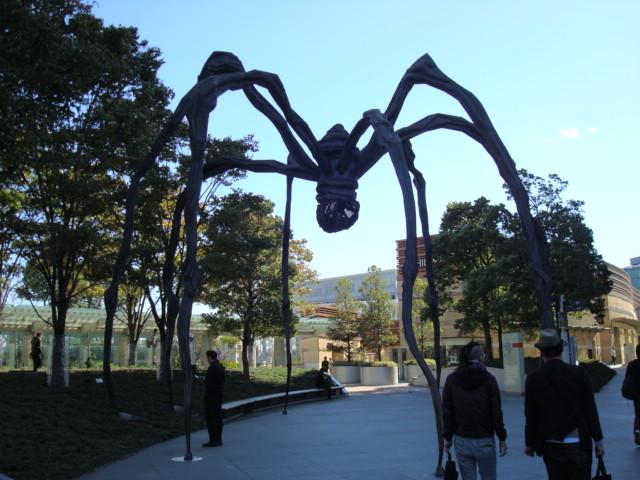 巨大蜘蛛!!!!!!