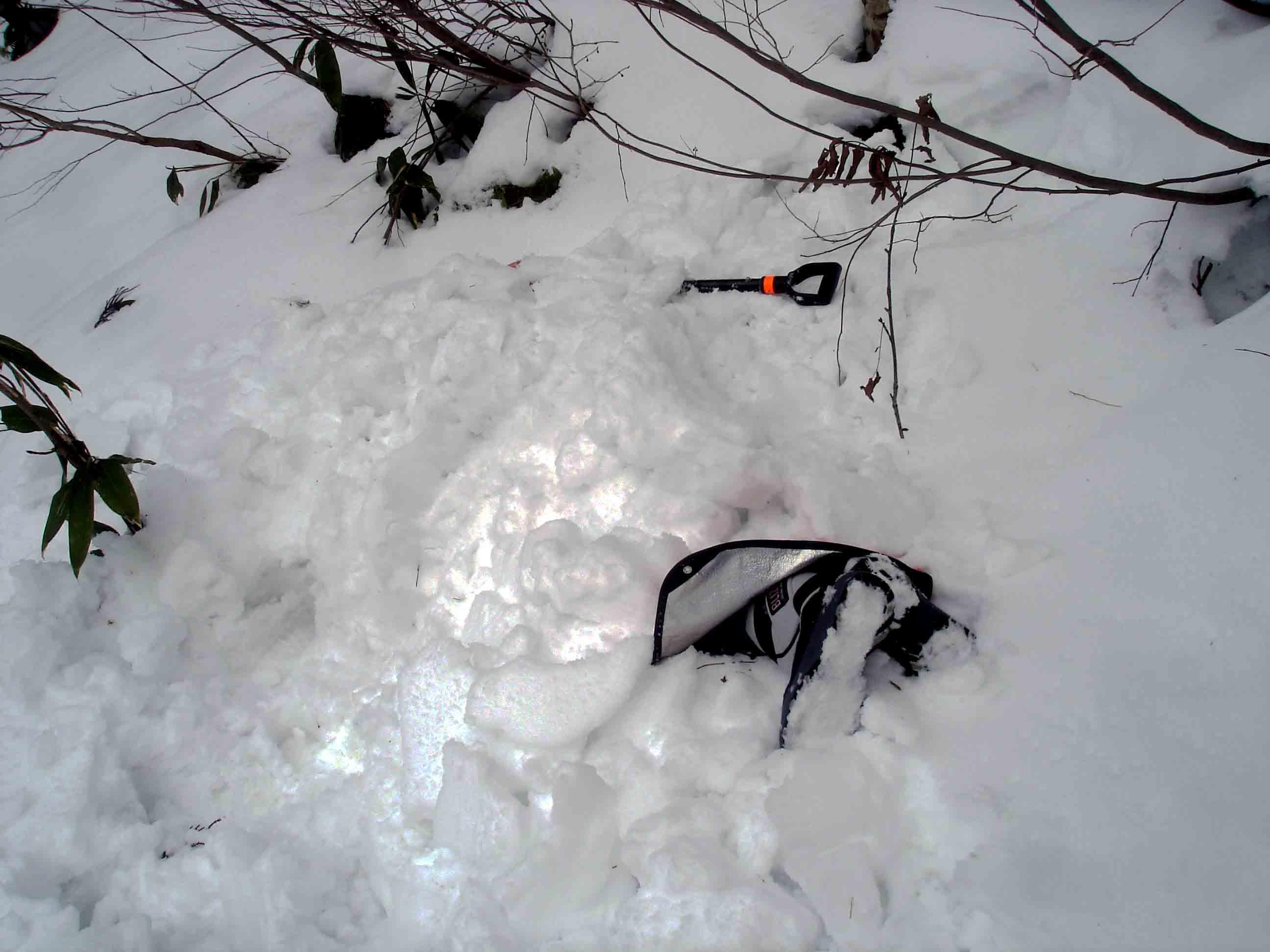 積雪が少ないので半埋没で
