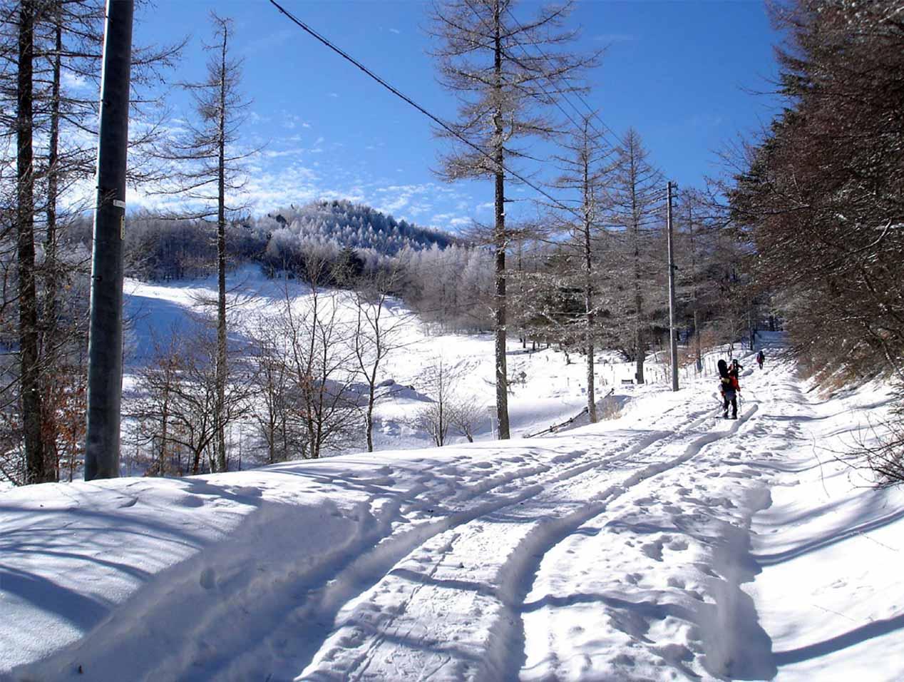 (5)雪崩講習会へ