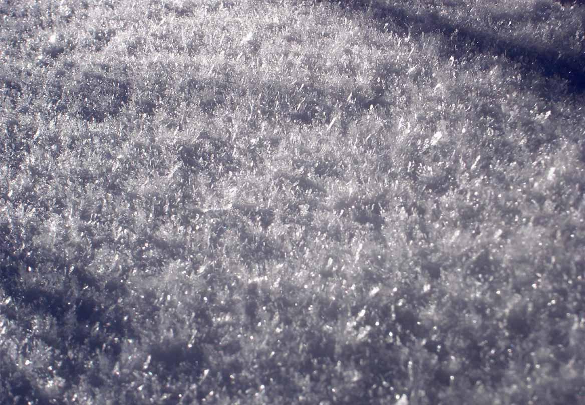 (29)雪面に降りた霜(表面霜)の結晶