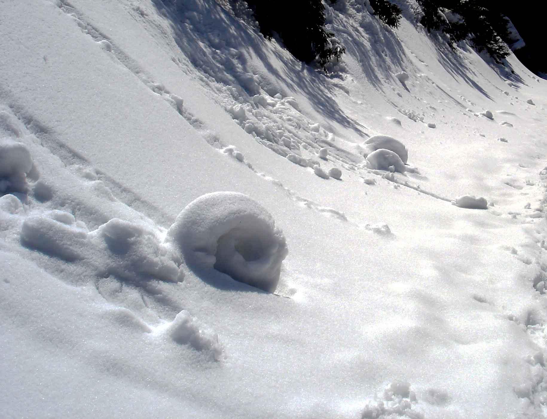 ロール状の雪玉