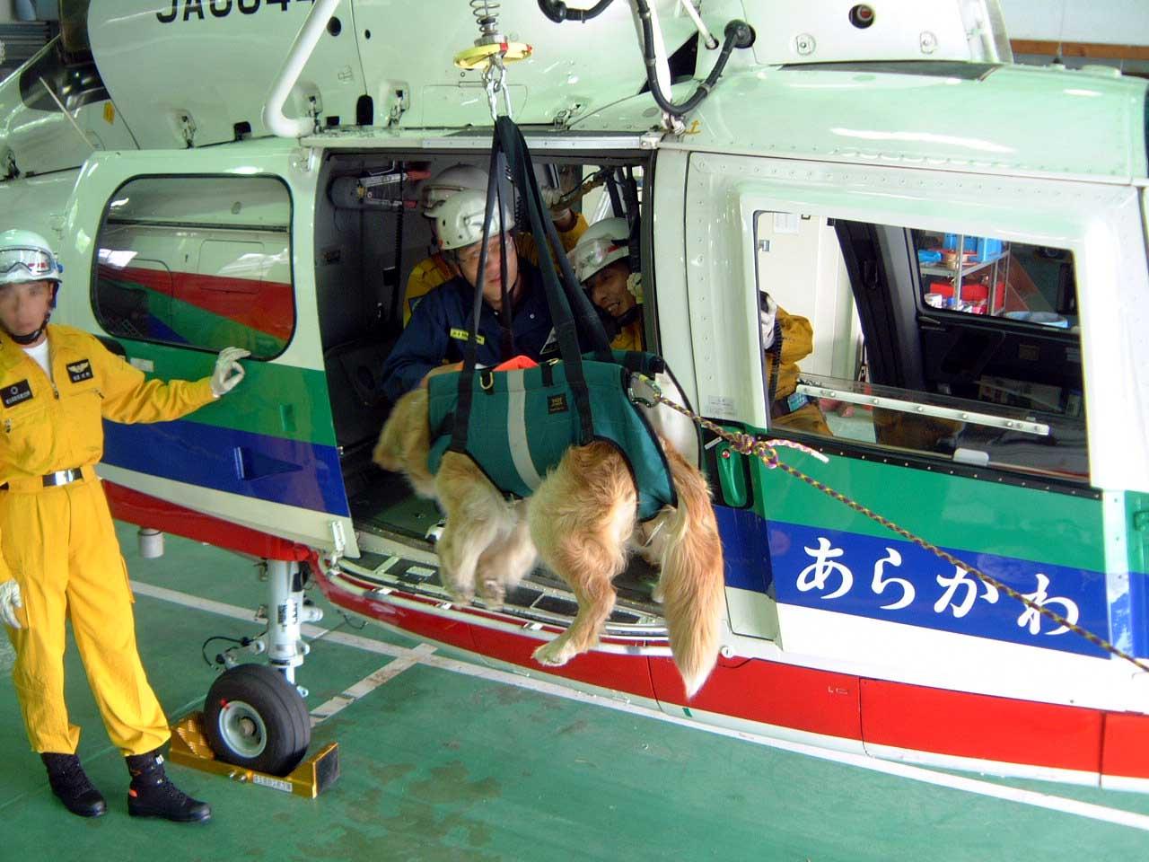 初回駐機訓練⑦ ヘリから吊り下げ