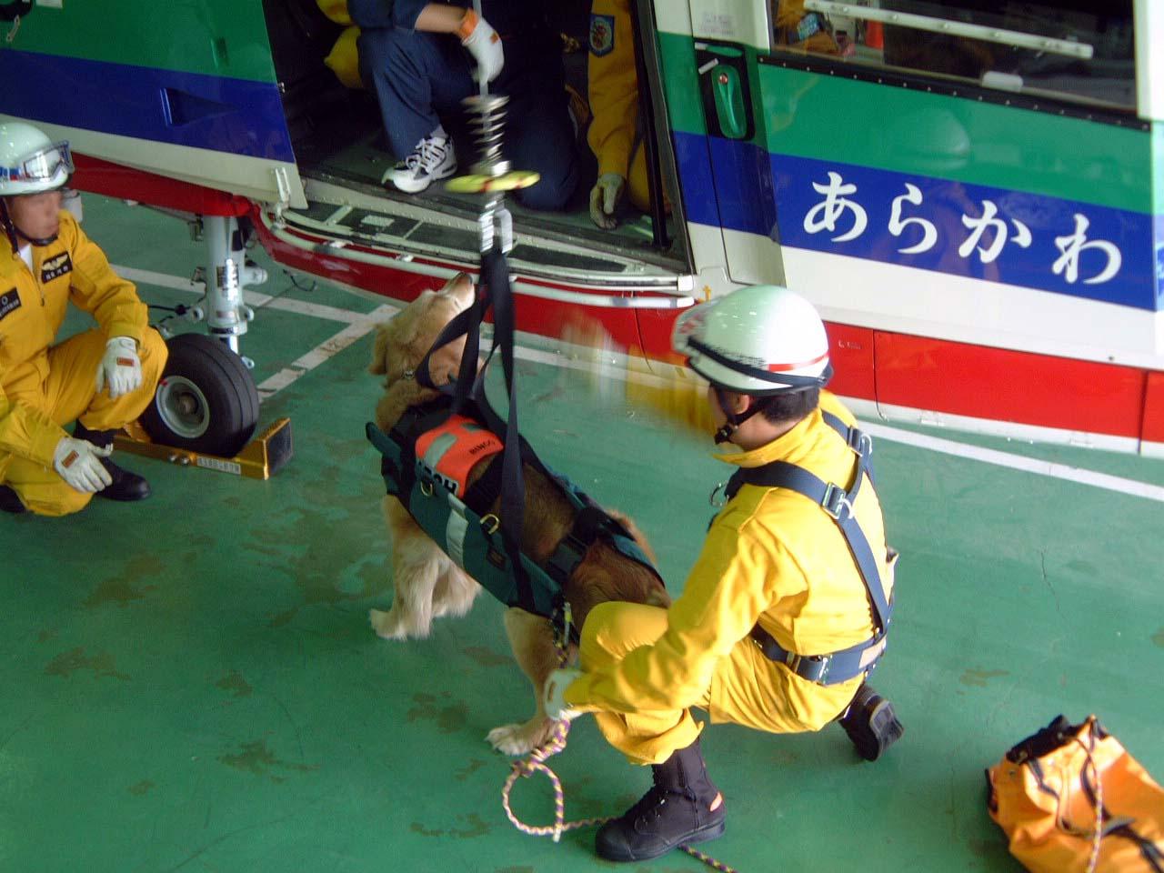初回駐機訓練⑧ ヘリから吊り下げ