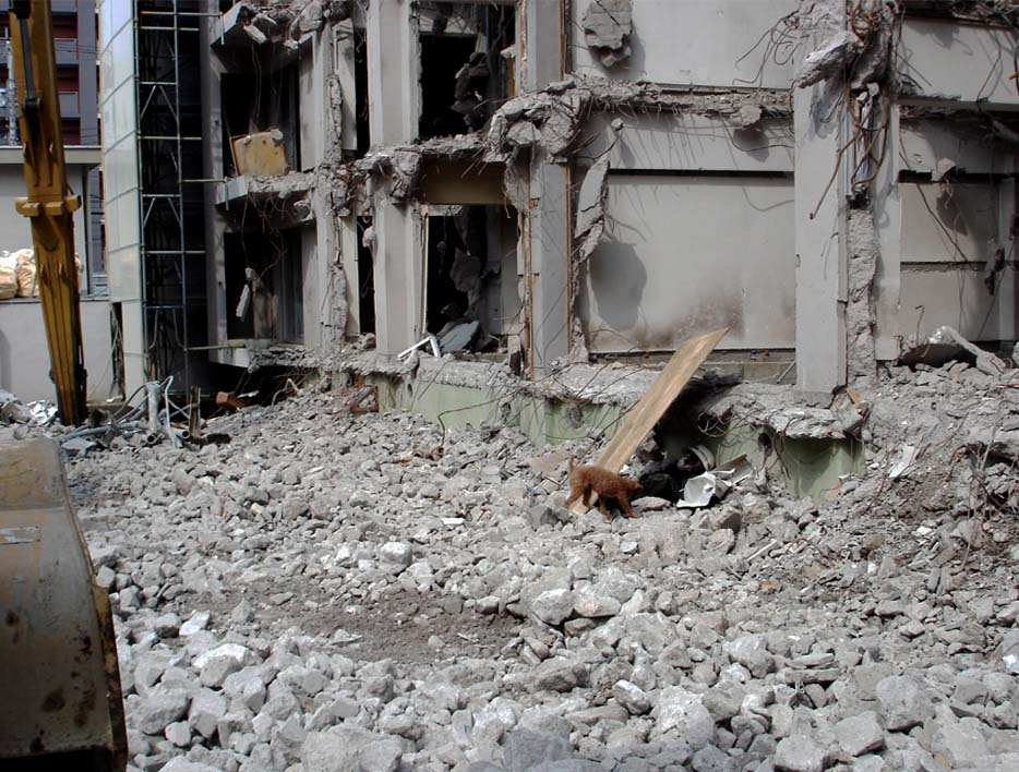 瓦礫現場捜索初歩訓練③