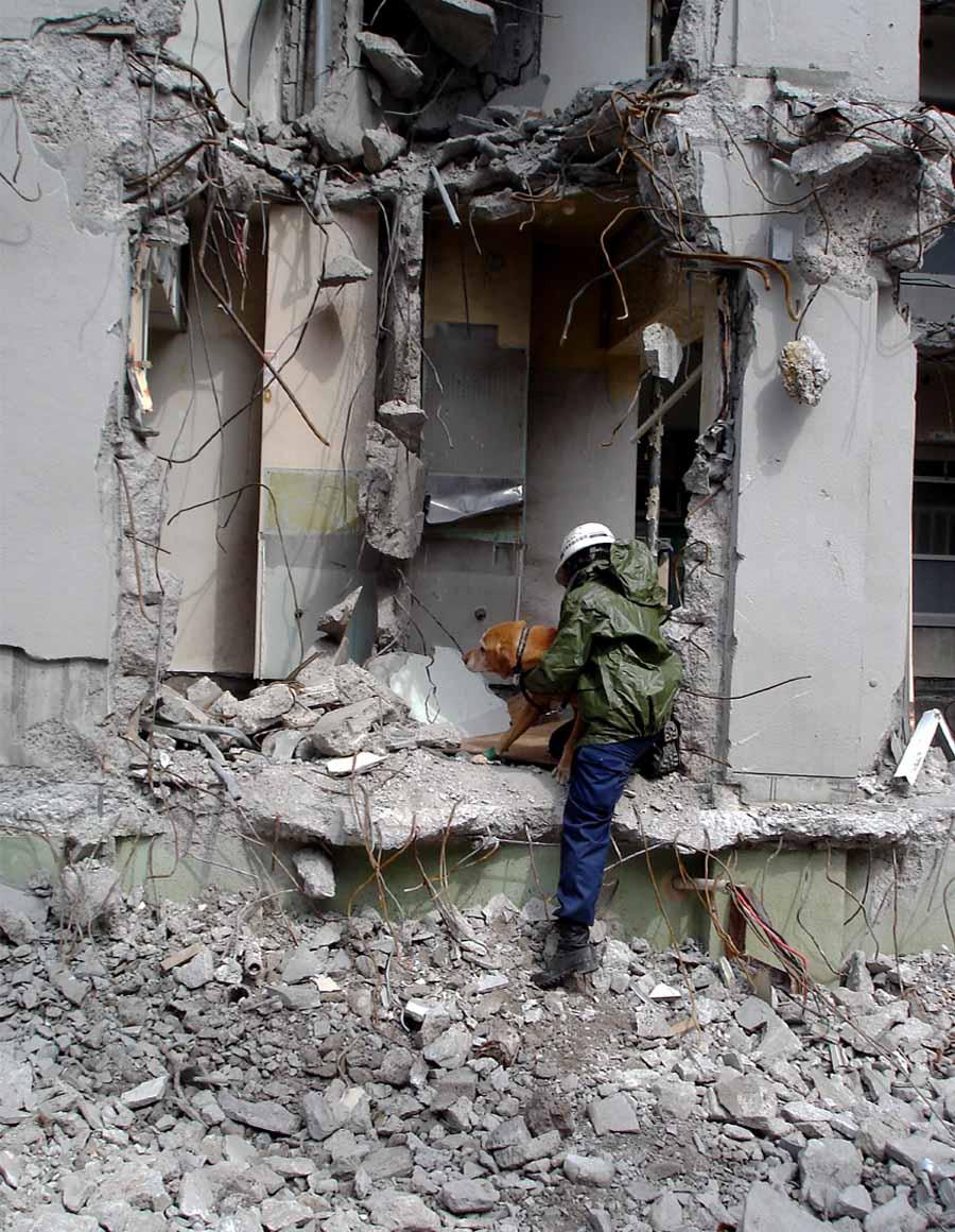 瓦礫現場捜索基礎訓練⑥