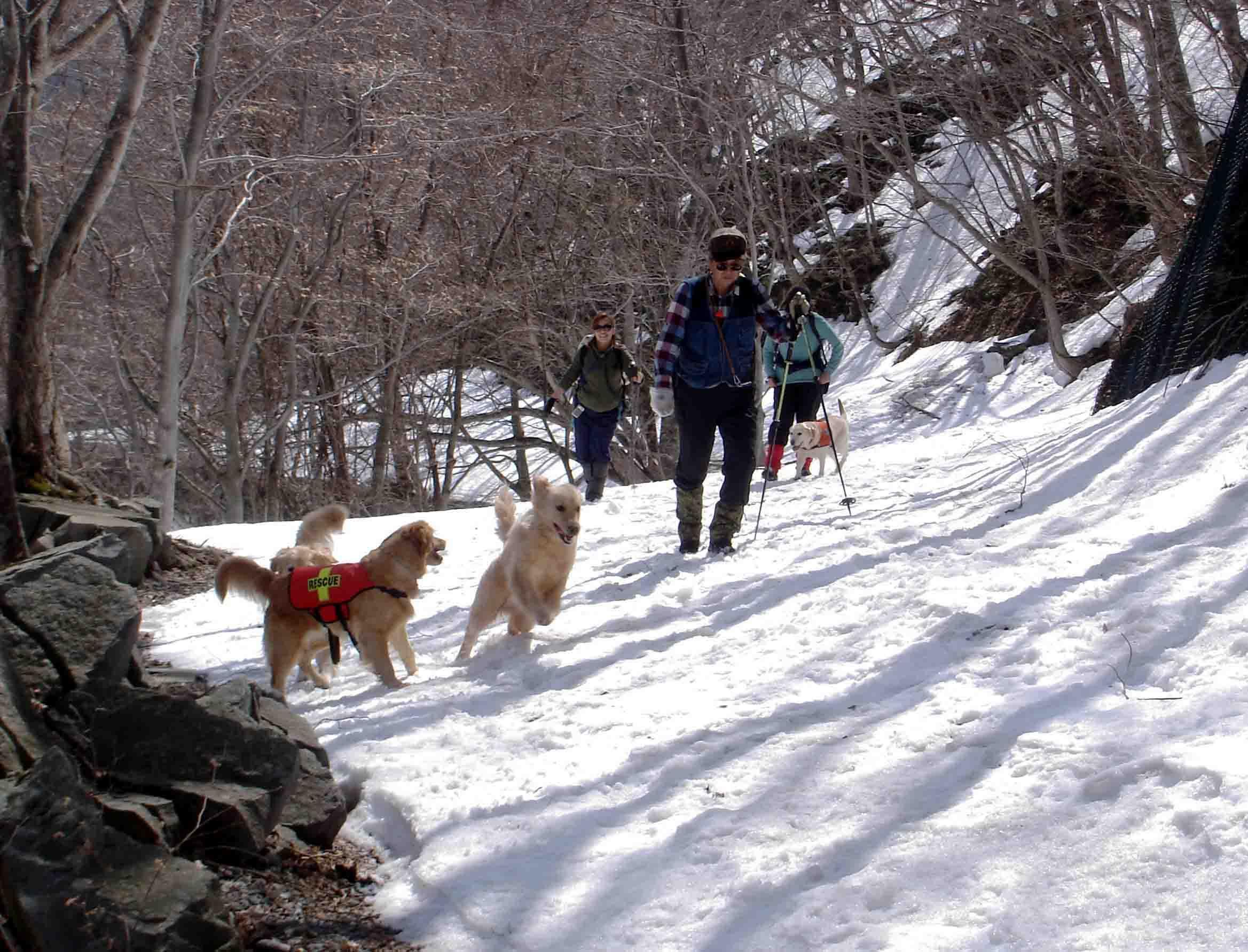 雪中訓練(6) マチガ沢への道