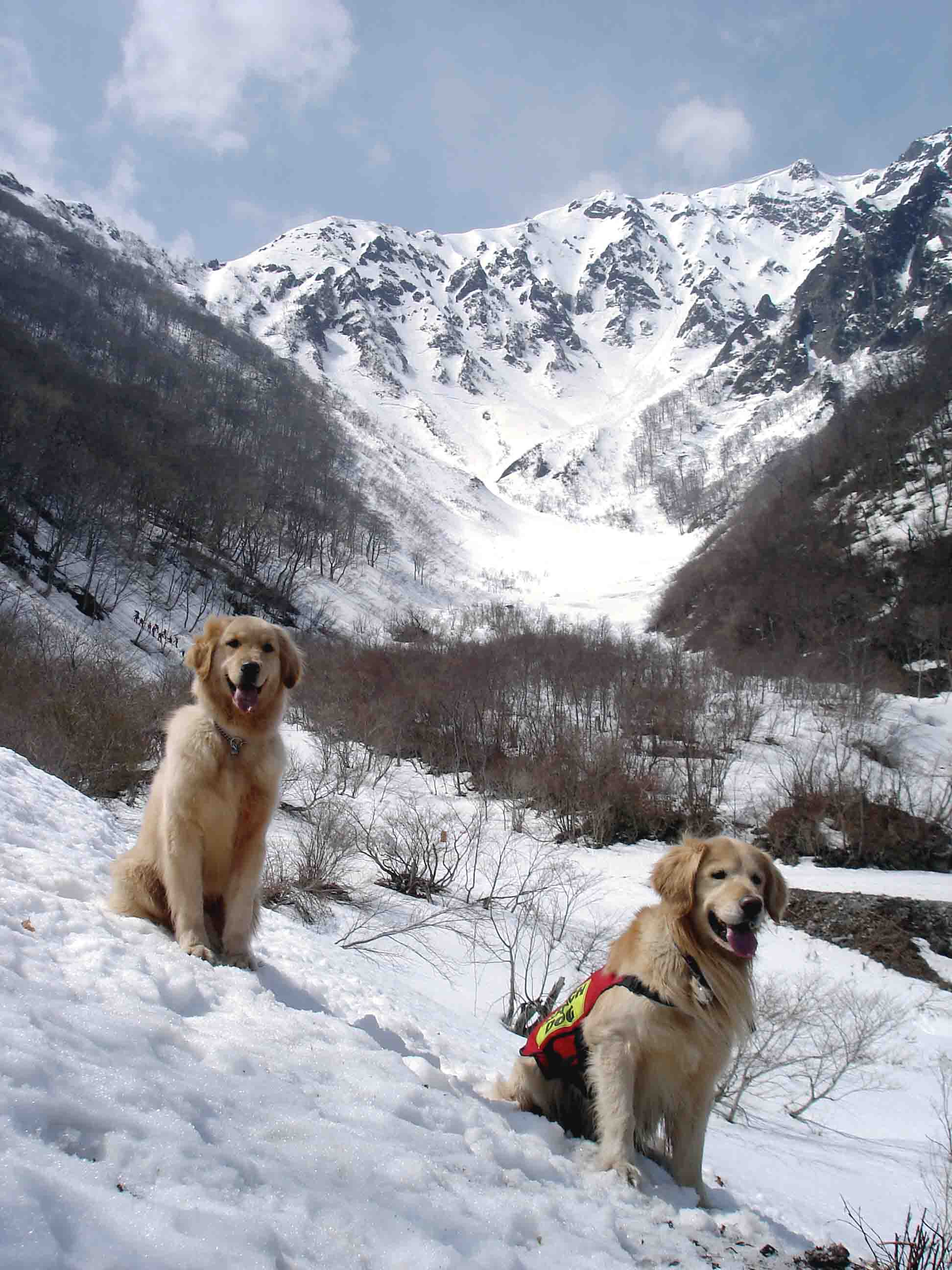 雪中訓練(10) マチガ沢