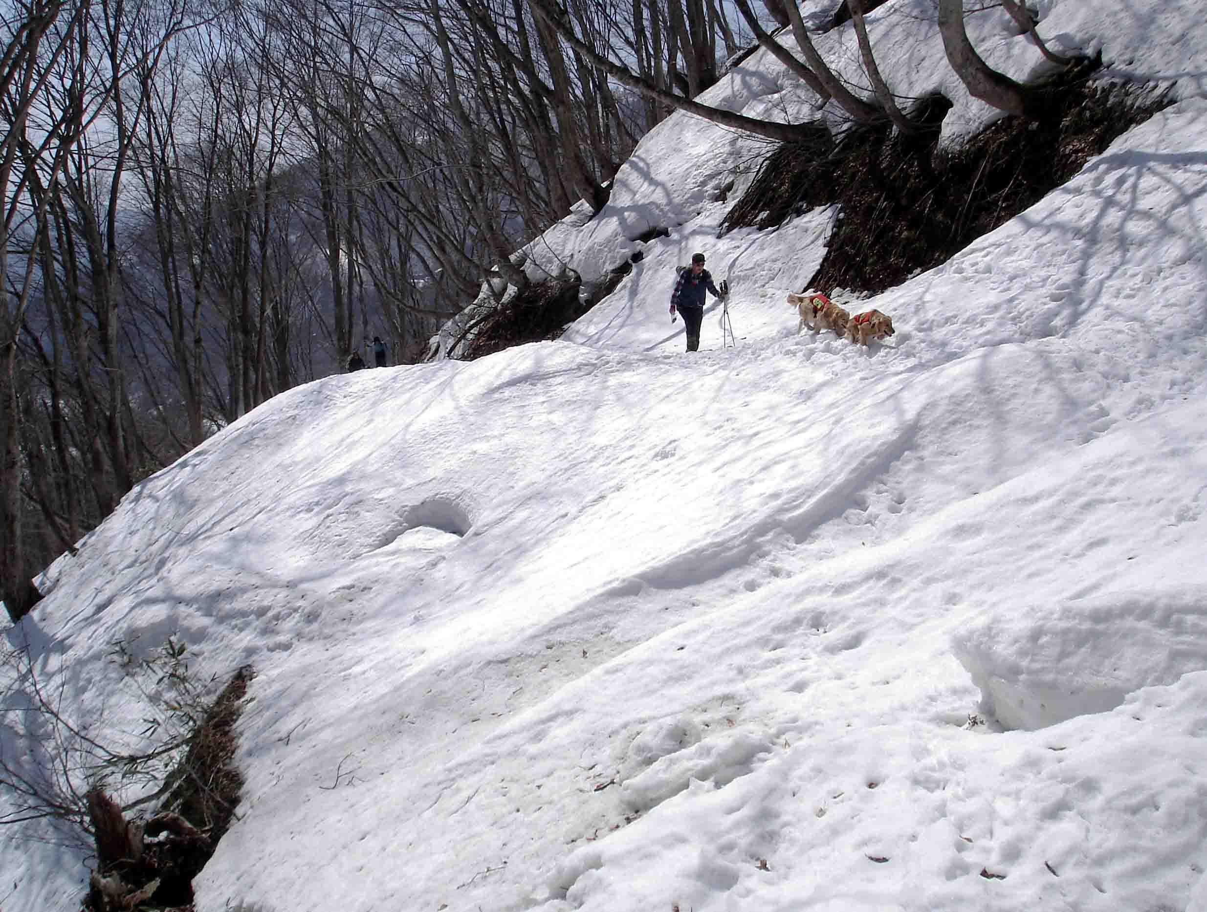 雪中訓練(3) マチガ沢への道