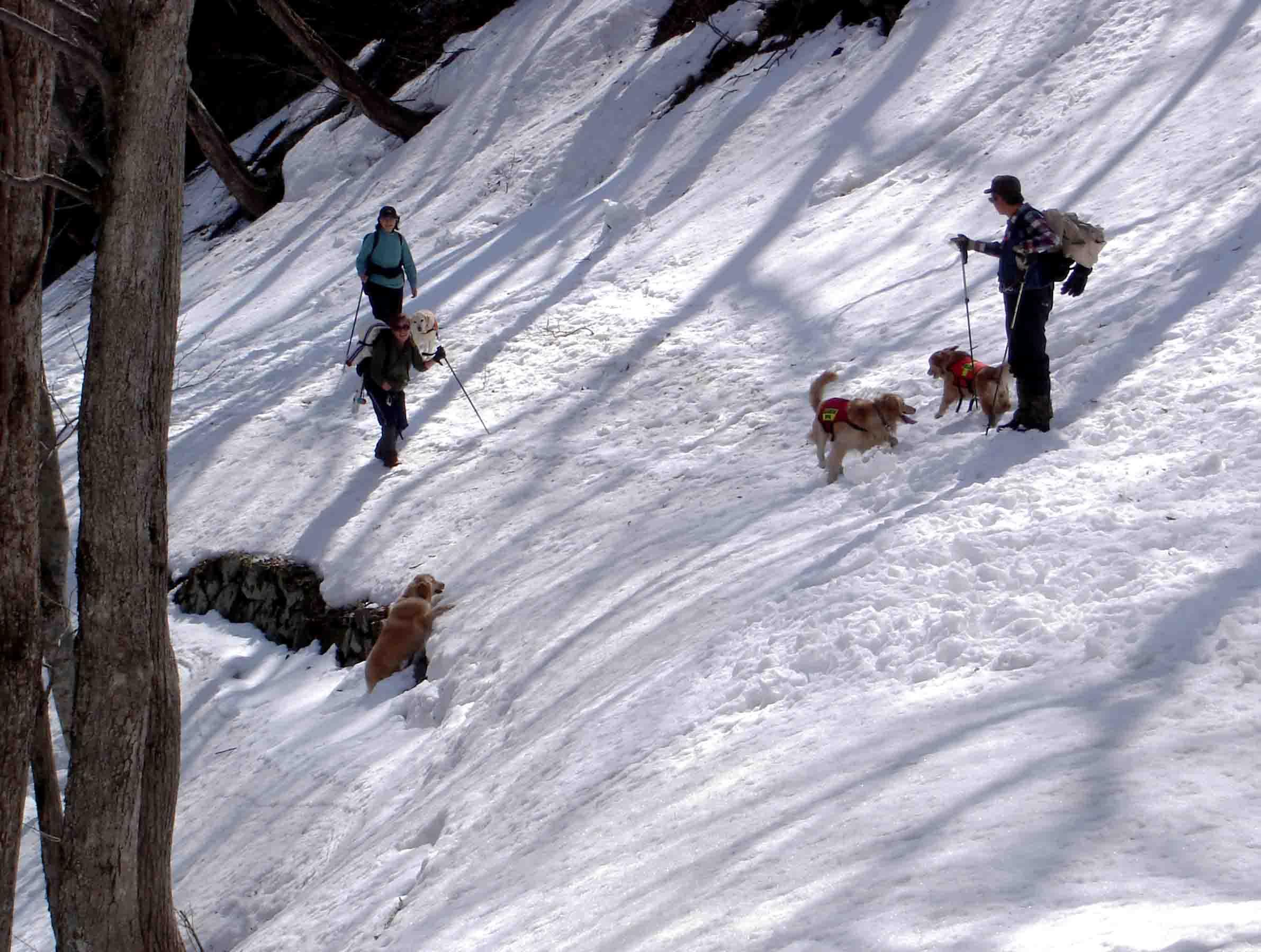 雪中訓練(7) マチガ沢への道