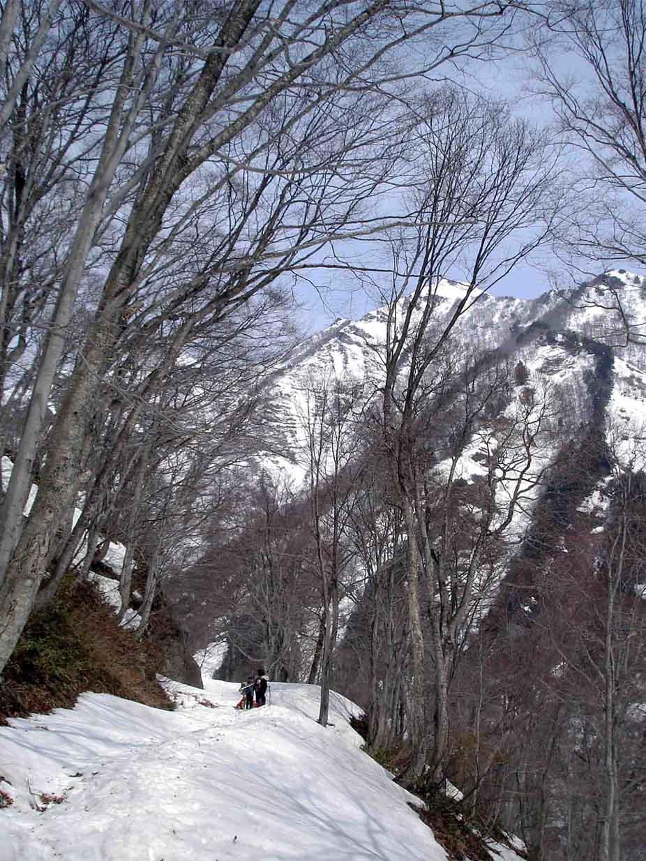 雪中訓練(13) 一ノ倉沢への道