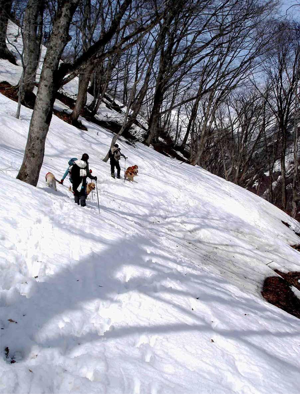 雪中訓練(14) 一ノ倉沢への道