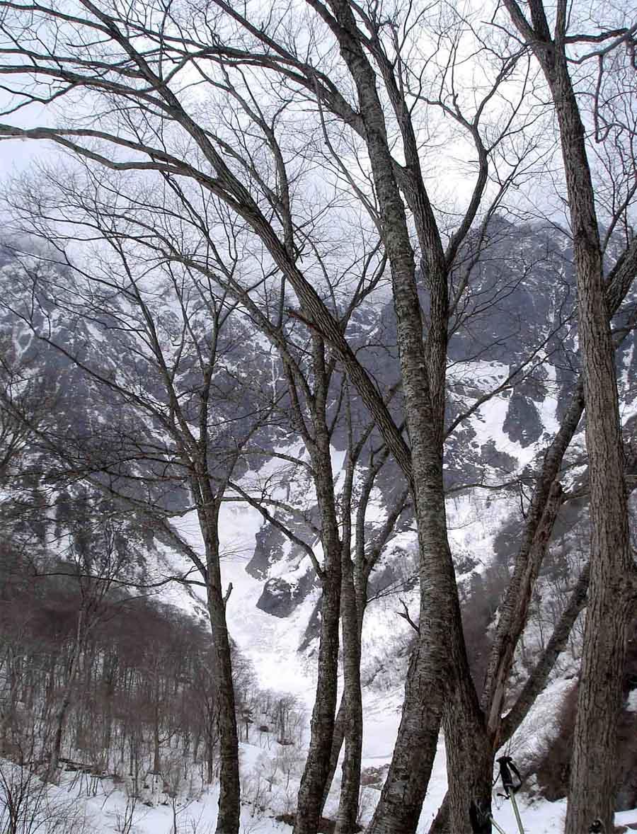 雪中訓練(18) 一ノ倉沢(天候悪化)