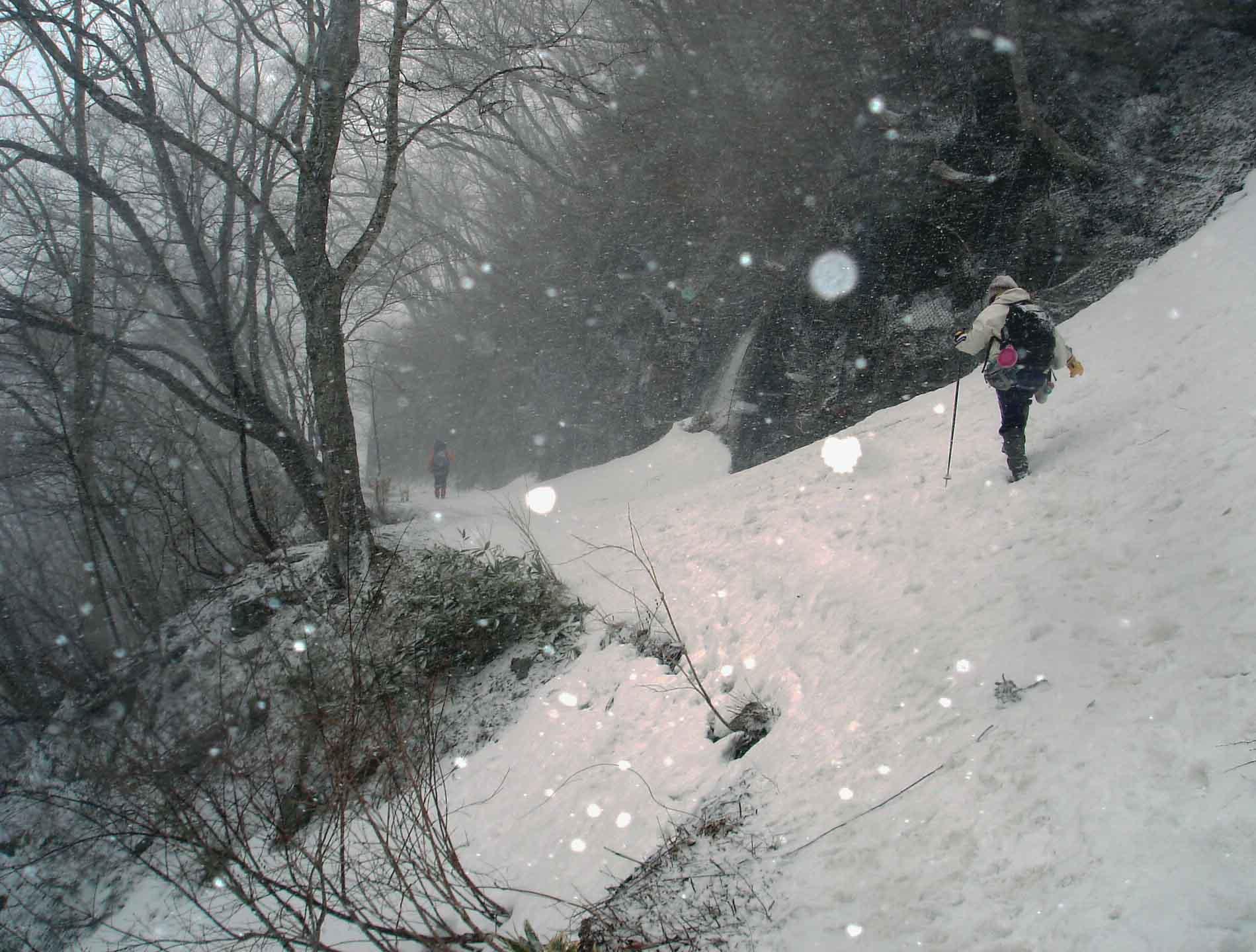 雪中訓練(22) 帰路マチガ沢へ