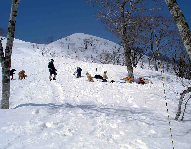 雪中訓練Ⅱ(5) 訓練エリア到着