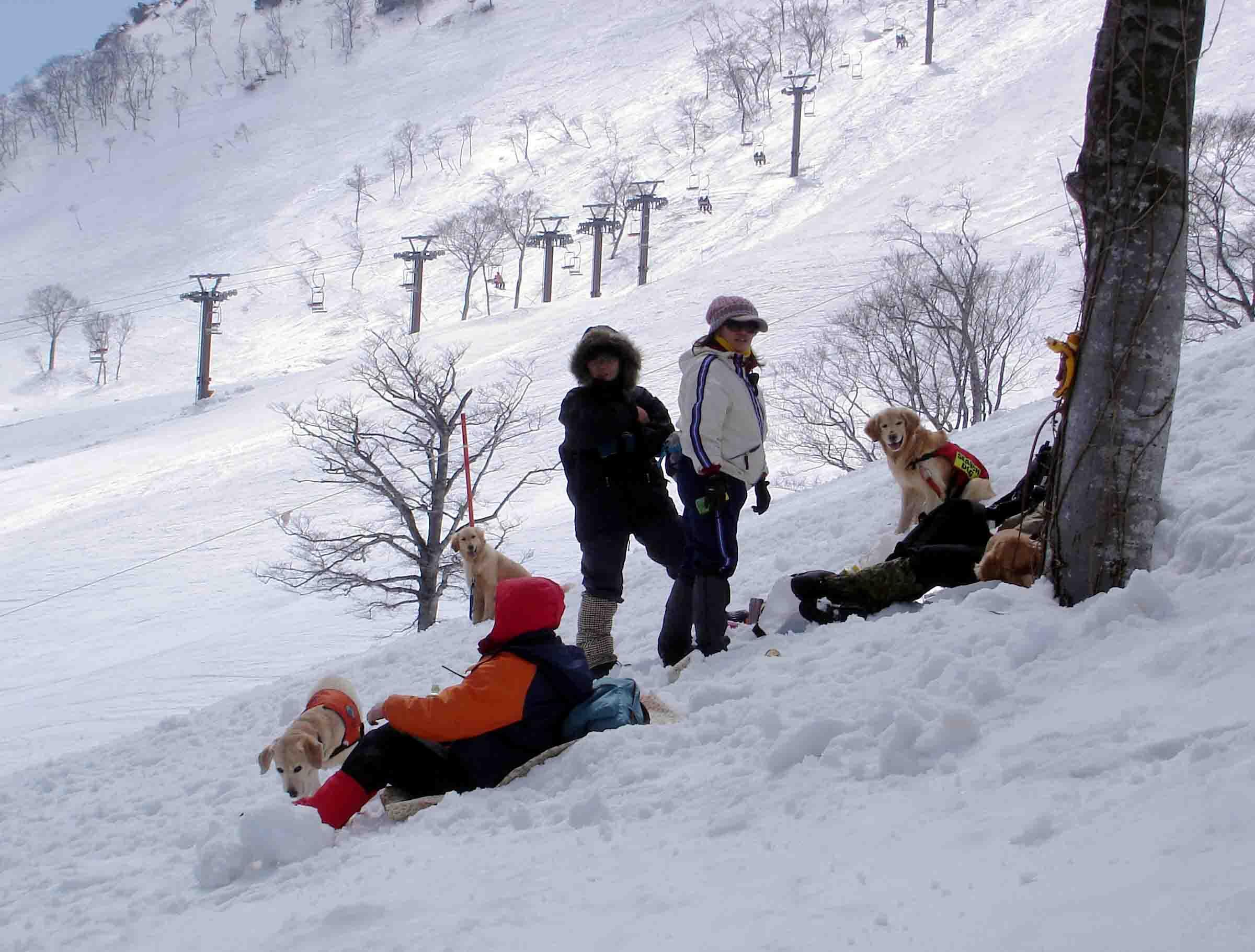 雪中訓練Ⅱ(14) 雪上の至福