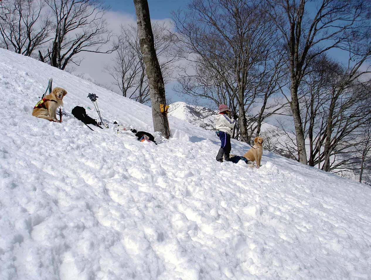雪中訓練Ⅱ(17) 埋没者捜索待機中