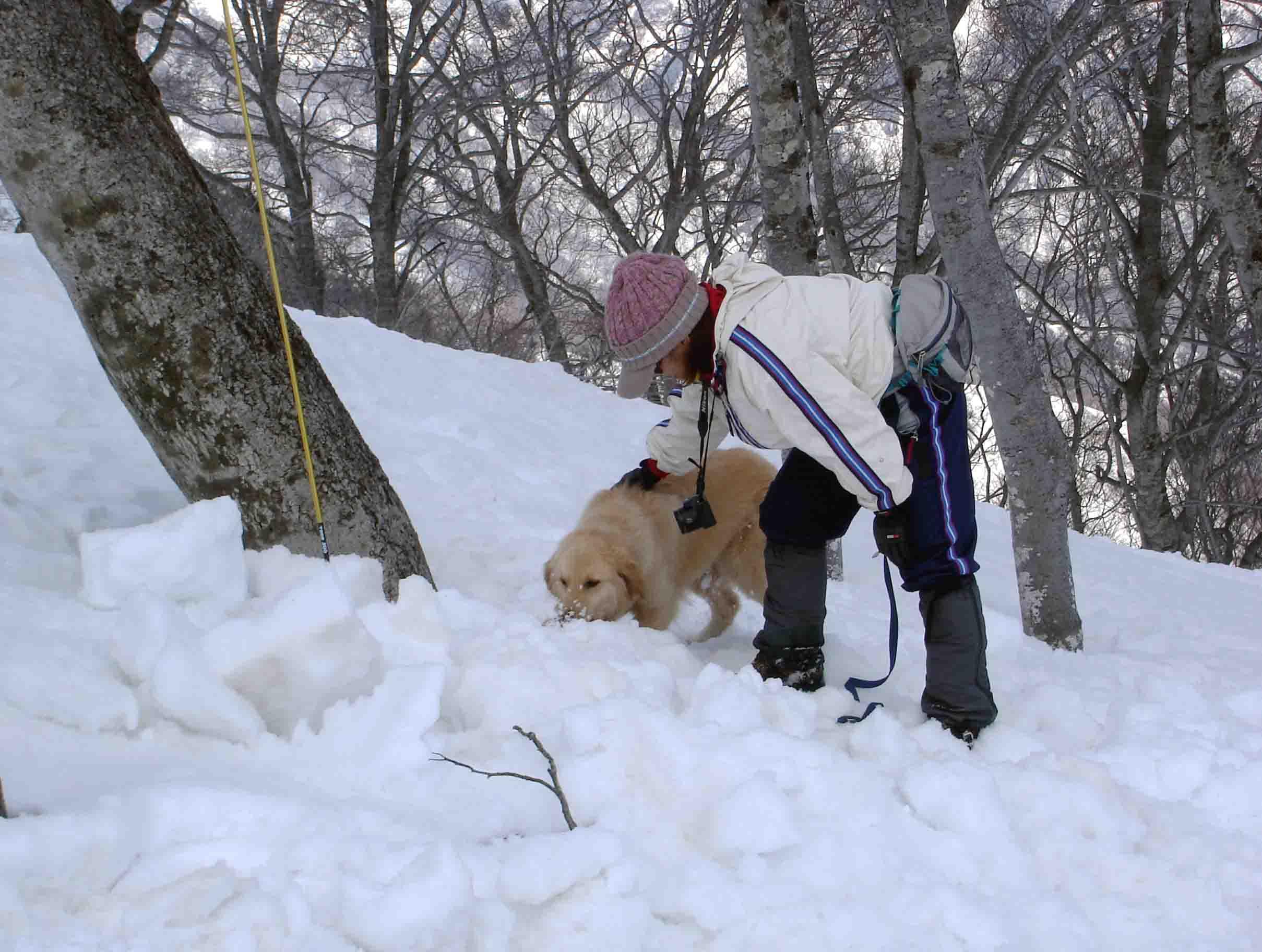 雪中訓練Ⅱ(27) GMD捜索